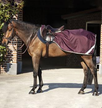 Horseware; AMIGO Ripstop Competition Sheet - fige