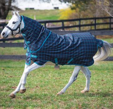 Horseware; AMIGO Pony Plus 50g - BlackCheck