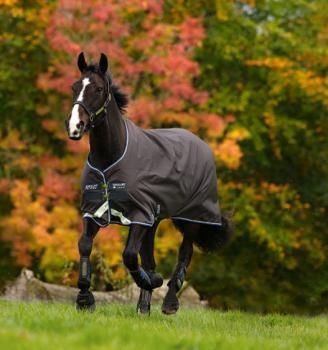 Horseware; AMIGO Pony Bravo-12 TO Lite - excalur